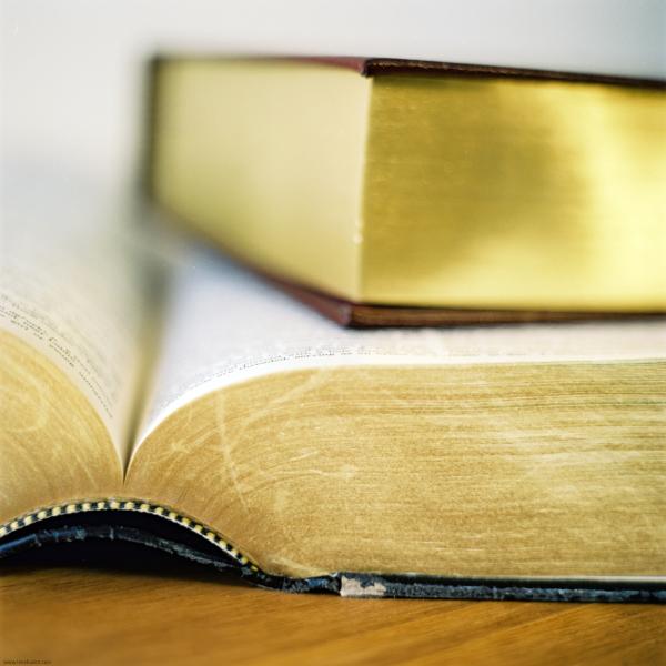 books resized 600