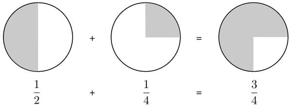 Circle fig